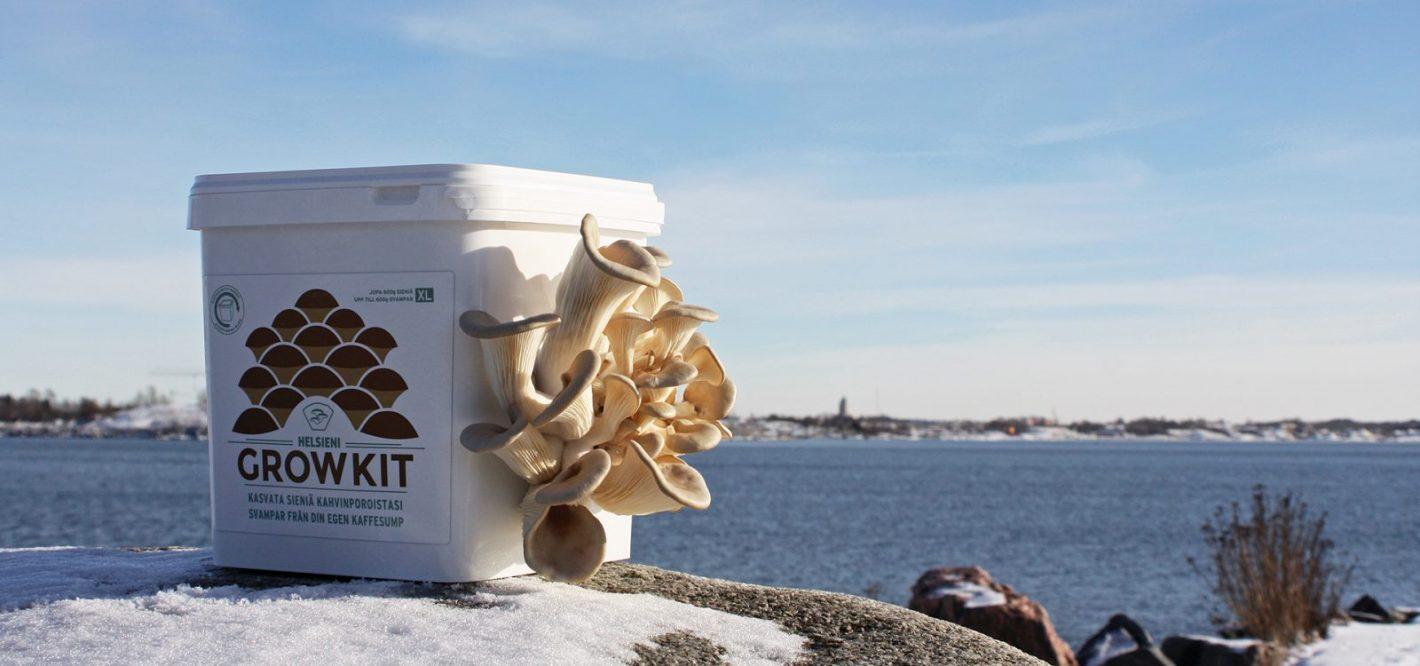 Helsieni package in the seaside.