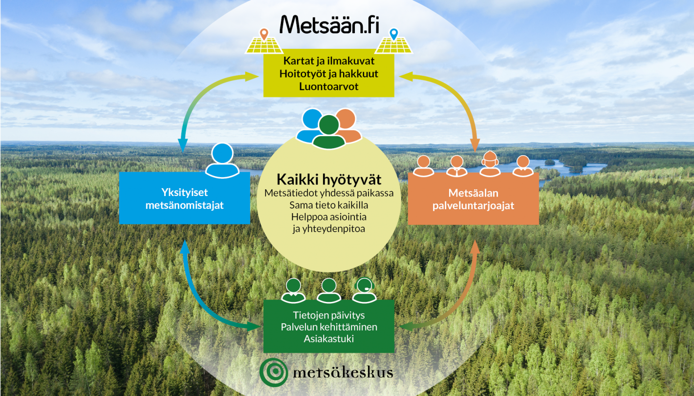 Metsään.fi kaavio, taustalla metsämaisema.